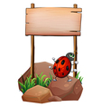 A bug below the empty wooden signboard vector image vector image