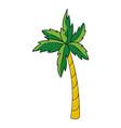 beach palm cartoon vector image