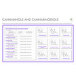 cannabinol and cannabinodiol cbn with structural vector image vector image