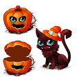 cat in hat and box of pumpkin halloween character vector image vector image