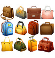 Collection of different bags vector image vector image