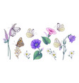hand drawn wild flowers and butterflies set vector image vector image