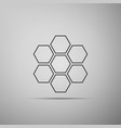 honeycomb sign icon isolated honey cells symbol vector image vector image