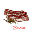 icon of fresh bacon meat for butchery vector image vector image