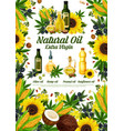 natural oil product poster of healthy natural food vector image