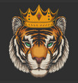 tiger waring crown vector image