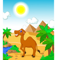 funny camel cartoon with desert landscape backgrou vector image