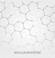 geometric medicine molecule molecular background vector image vector image