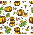 hand drawn seamless pattern sketch pumpkin vector image vector image