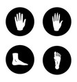human body parts glyph icons set vector image