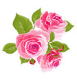 pink roses and buds vintage flowers set wedding vector image vector image