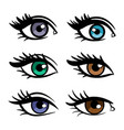 popular colors female eyes vector image