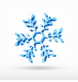 snowflake 3d vector image