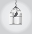 bird grey vector image vector image