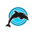 dolphin and circle logo design vector image vector image