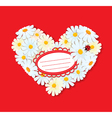 Heart is made of daisies on a red background vector image