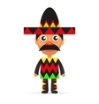 Mexican hat sombrero vector image vector image
