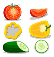 ripe vegetables tomato vector image
