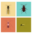 assembly flat insect wasp soldier vector image vector image