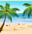 beach with palms sand vector image vector image