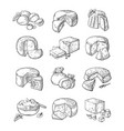set of different cheese vector image vector image