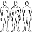 set of men body types vector image