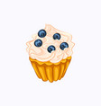 vanilla cupcake with cream and blueberry isolated vector image