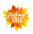 Autumn sale lettering design Fall leaf Label vector image vector image
