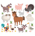 cartoon farm animals turkey cat ram goat chicken vector image