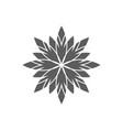 circular geometrical ornament ornamental vector image
