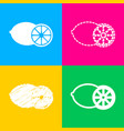 fruits lemon sign four styles of icon on four vector image