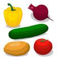 ripe vegetables pepper vector image