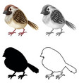 set sparrow character vector image