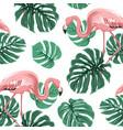 pink flamingo birds green monstera leaves pattern vector image
