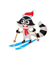 cute raccoon character skiing in hat and scarf vector image vector image