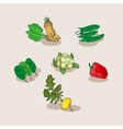 Hand-drawn collection of icons vegetables vector image