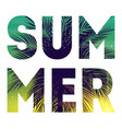 summer natural placard poster flyer or vector image vector image