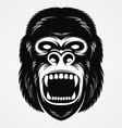 Wild Gorilla Head vector image vector image