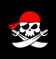 pirate flag skull black banner filibuster head vector image