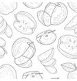 apples seamless pattern monochrome hand drawn vector image