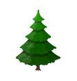 christmas tree spruce evergreen tree vector image vector image