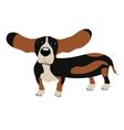 Dog Basset Hound vector image vector image