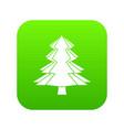 fir tree icon digital green vector image