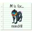 Flashcard letter M is for mandrill vector image vector image