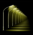 a row street lamps in perspective black night vector image vector image