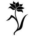 decorative tulip icon silhouette vector image vector image