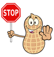 Peanut Cartoon Holding a Stop Sign vector image
