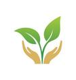 hand leaf logo vector image