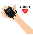 adopt me hand arm holding black cat animal pet vector image vector image