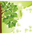 Eco background with tree Place for text vector image vector image